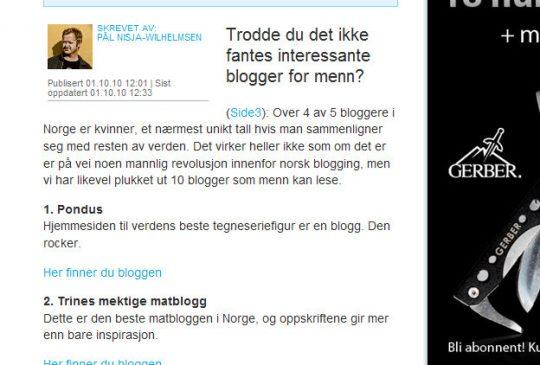 Image: 10 blogger for menn