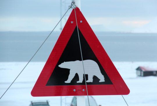 Image: Høydepunkter fra Svalbardturen + middag på «Funken»