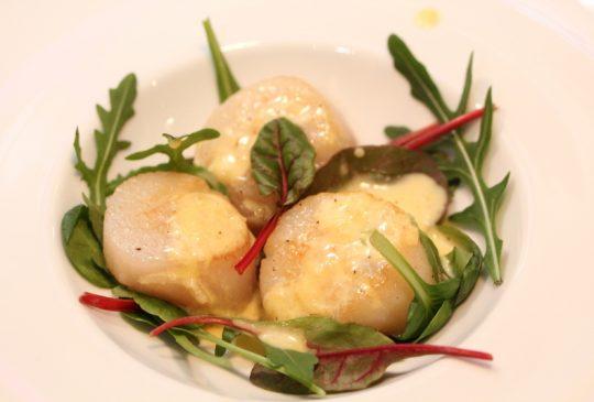 Image: Kamskjell med parmesanaïoli