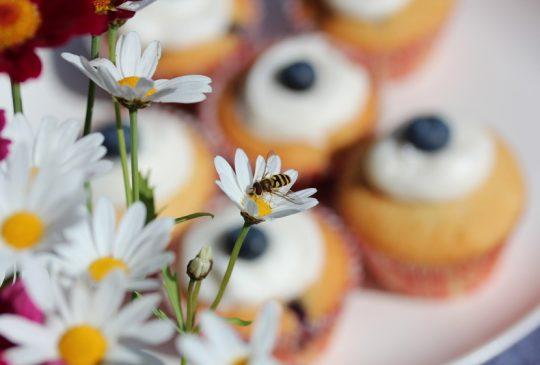 Image: Om blomster, bier og humler og sånn …